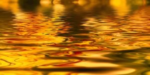 océan d'or